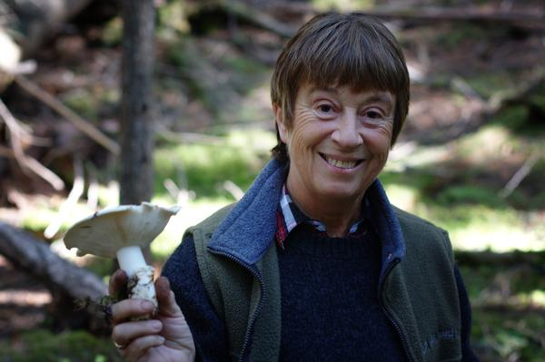 Mom with a Mature Pine Mushroom